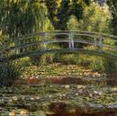日本風の橋と睡蓮