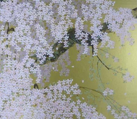 高山村の枝垂桜