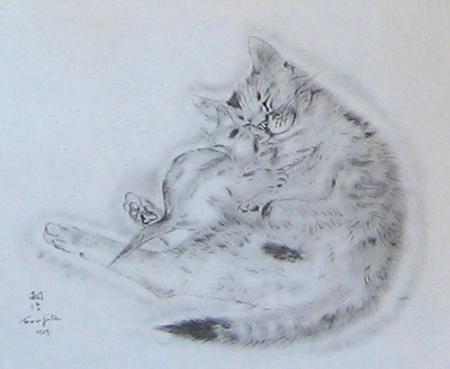 猫の本・アオラ