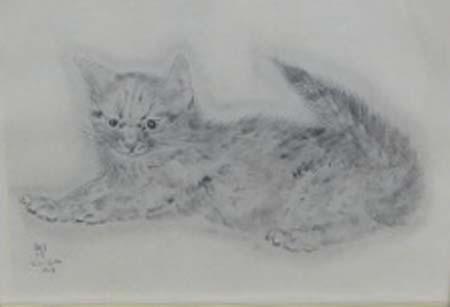 猫の本・アビハイル